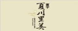 富宇夏川里美_253X100